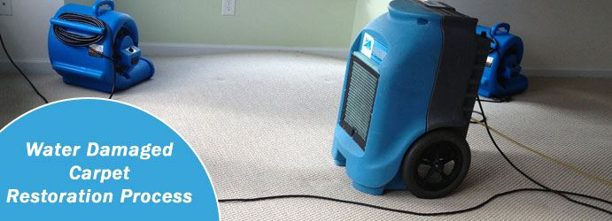 Professional Water Damaged Carpet Restoration