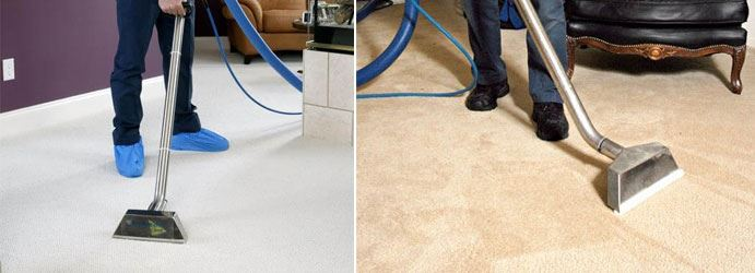 Carpet Sanitizing Coolbellup