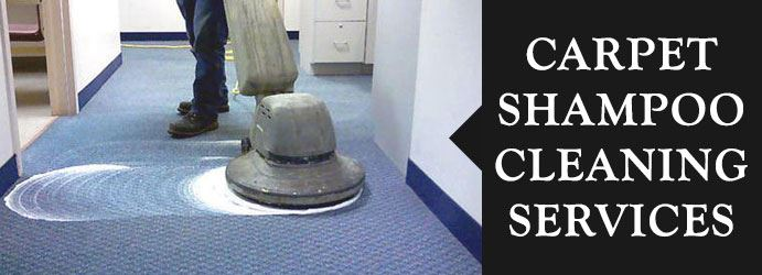 Carpet Shampoo Cleaning Services Adelaide