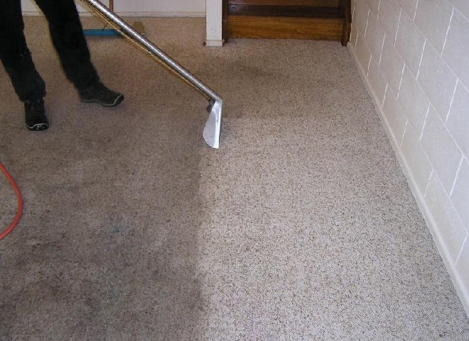 Professional Carpet Cleaning Lyndhurst
