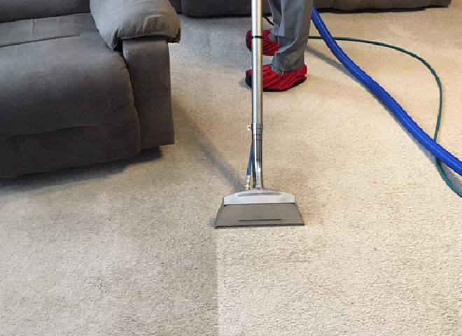 Professional Carpet Cleaning point cook