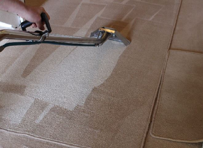 professional carpet cleaning toorak