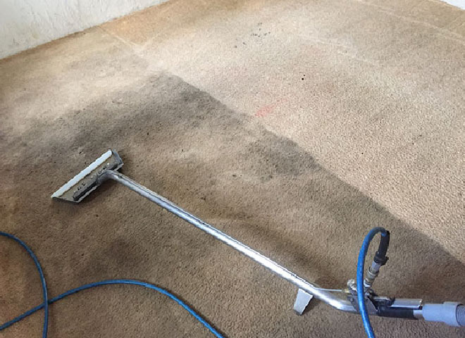Carpet Cleaning Experts Lilydale