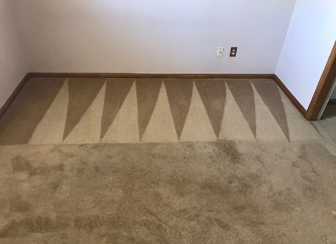Professional Carpet Cleaning Lilydale