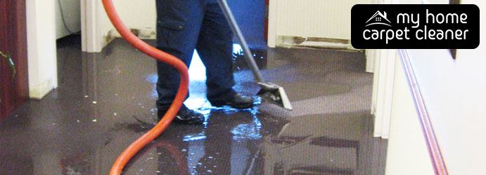 Wet Carpet Cleaning Glen Huntly
