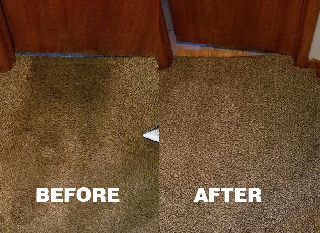Best Carpet Cleaning Caversham Wa