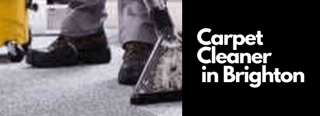 Best Carpet Cleaning Services